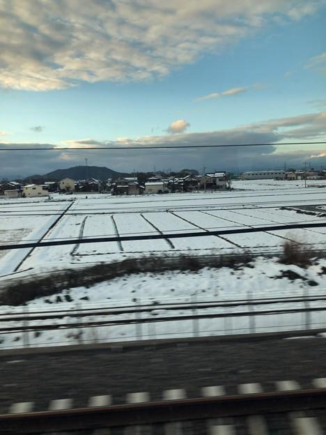 雪積もってる