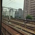 Photos: にゃごや