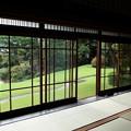 Photos: 和室から見える庭