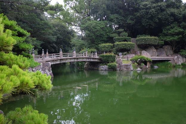 栗林公園の池と木橋