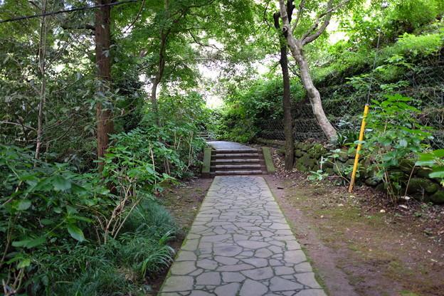日本寺の石畳