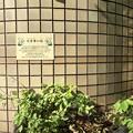 写真: 2018.8.7 百草木の径
