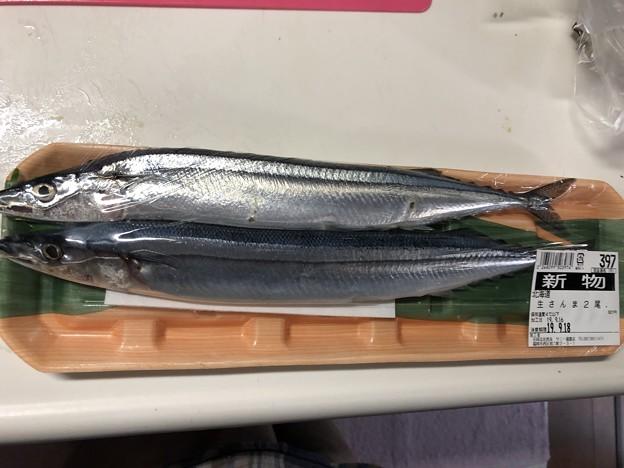 2019.9.16 初秋刀魚