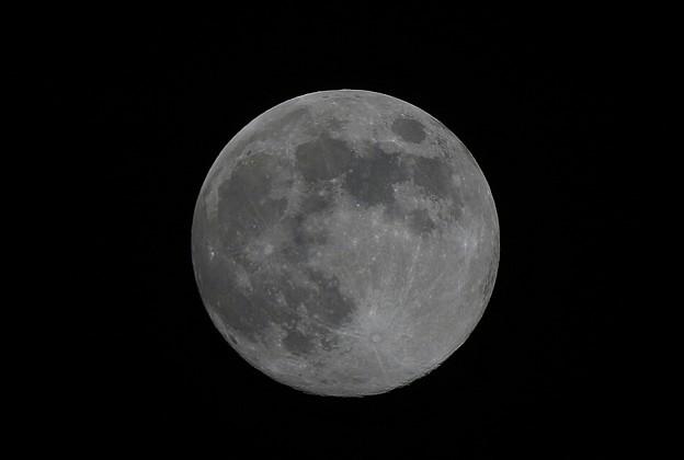 満月のお月様