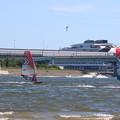 写真: ウィンドサーフィンとコアジサシ
