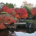 Photos: 好古園の紅葉