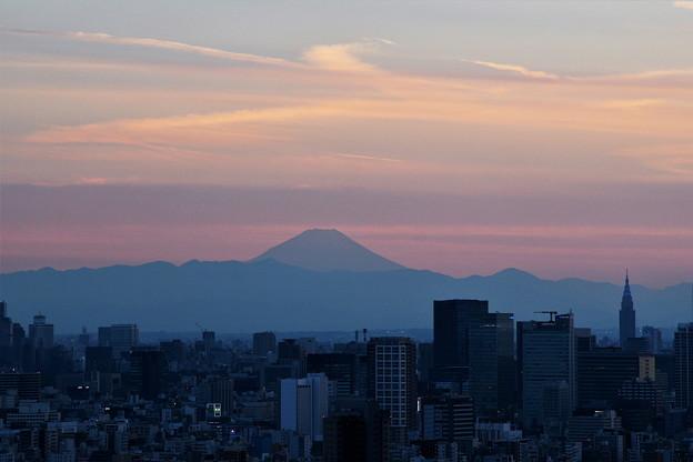 ソラマチから富士山