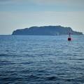 写真: 無人島猿島