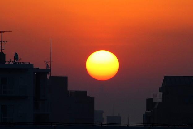 2月7日 上る太陽
