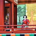 Photos: 義経千本桜