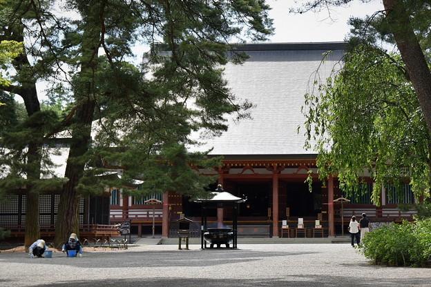 毛越寺(世界遺産)
