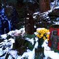 写真: 281 小木津不動滝の不動明王