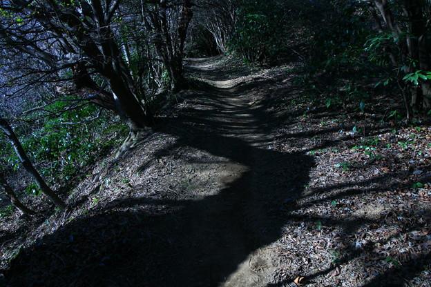 蛇塚 神峰山登山道