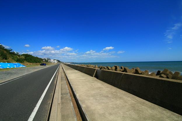 Photos: 871 水木海岸