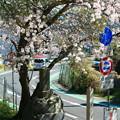 写真: 903 泉川道標