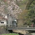 写真: 634 上諏訪橋 鮎川