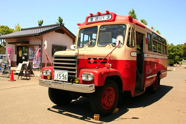 Photos: ひよっこバス