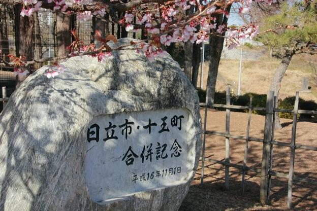 Photos: 099 日立市・十王町合併記念碑