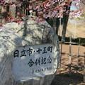 写真: 099 日立市・十王町合併記念碑