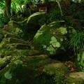 写真: 449 愛宕神社 御岩山