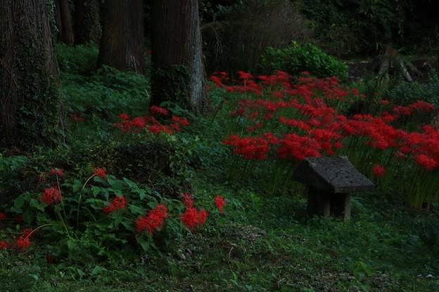 写真: 260 砂沢 北野神社
