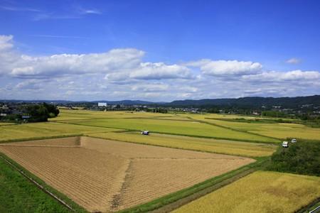 975 留町の田園風景