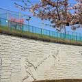 写真: 諏訪スポーツ広場