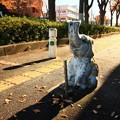 Photos: 636 けやき通りの象さん