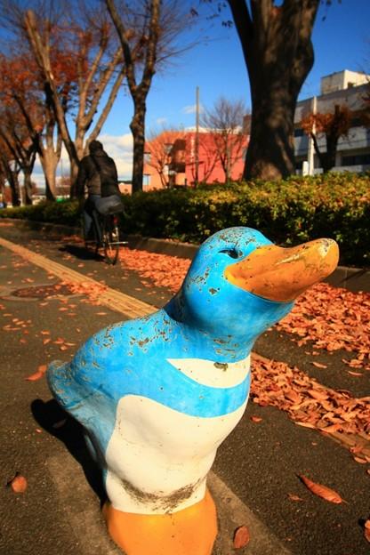 写真: 535 けやき通りのペンギン