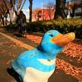 Photos: 635 けやき通りのペンギン
