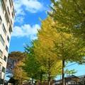 茨城大学 日立キャンパス