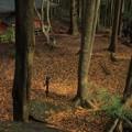 写真: 甲石と舟石 堅破山