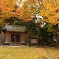写真: 213 蚕養神社
