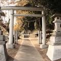 写真: 295 種殿神社 田尻