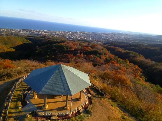 555 助川山・山頂 助川山市民の森