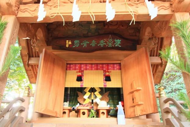 Photos: 908 甕星香々背男社 大甕神社