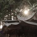 Photos: 859 伊勢神社 日立市 金沢町