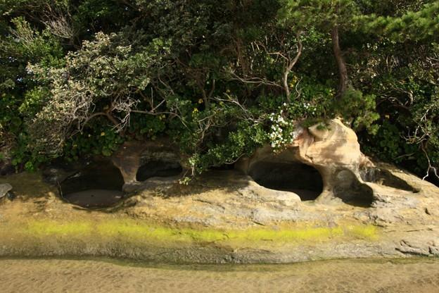 298 太田尻海岸の鹹水溜め