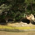 太田尻海岸の鹹水溜め