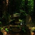 写真: 454 光神社