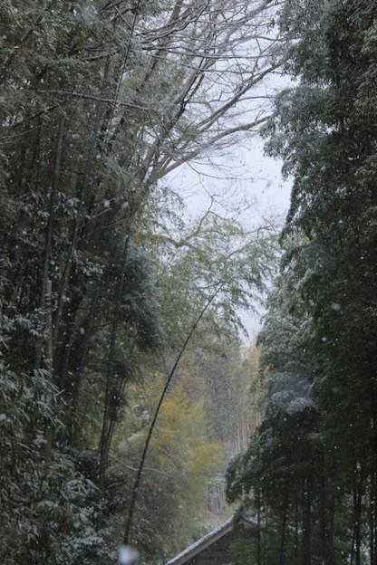 Photos: 313 六所の暮雪