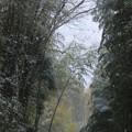 六所の暮雪