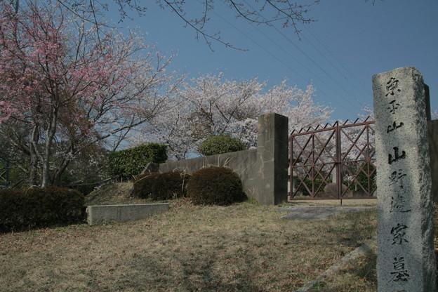 Photos: 549 山野邊家墓所