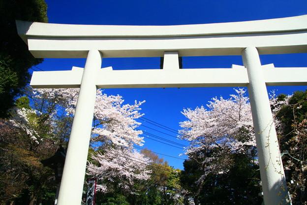Photos: 906 大甕神社