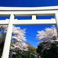Photos: 900 大甕神社