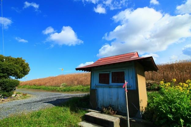 Photos: 978 久慈川の地蔵堂