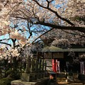 Photos: 六地蔵寺 水戸市