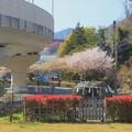 Photos: 345 神峰神社 ご出社お休み処