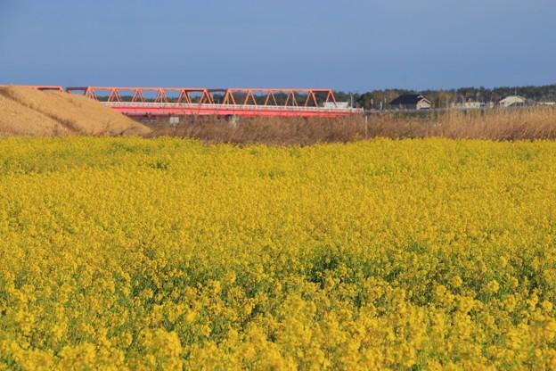 Photos: 954 久慈川の赤い橋