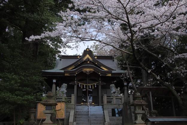 Photos: 189 艫神社